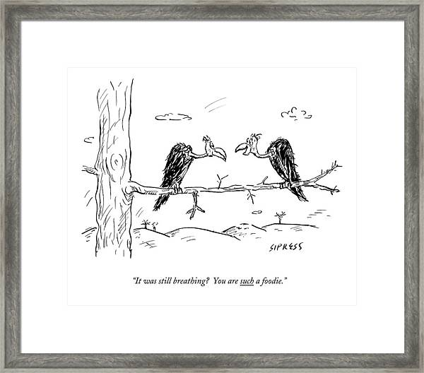 Two Buzzards Sit And Talk On A Branch Framed Print