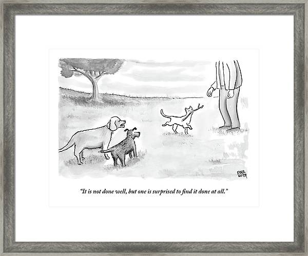 Two Dogs Criticize A Cat Who Has Just Retrieved Framed Print