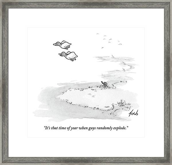 Two Ducks Fly Over A Pond. A Hunter Hides Framed Print