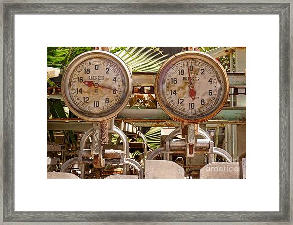 Two Farm Scales Framed Print