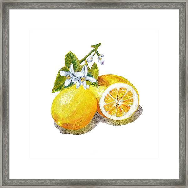 Two Happy Lemons Framed Print