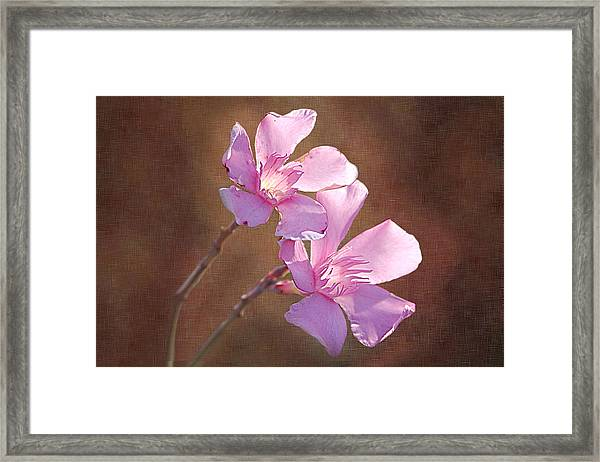 Two Heads In The Pink Framed Print