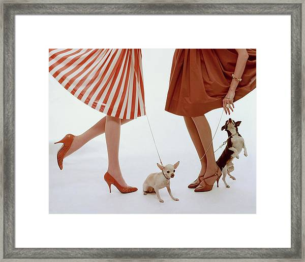 Two Models With Dogs Framed Print