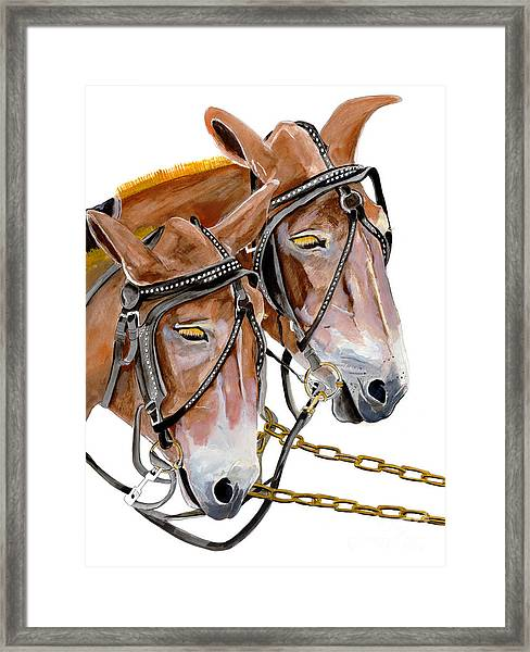 Two Mules - Enhanced Color - Farmer's Friend Framed Print