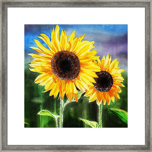 Two Suns Sunflowers Framed Print