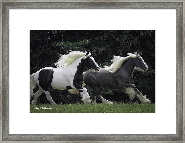 Two Together In Cadence Framed Print