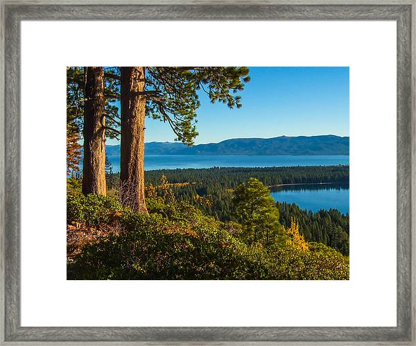 Two Trees Above Two Lakes Framed Print
