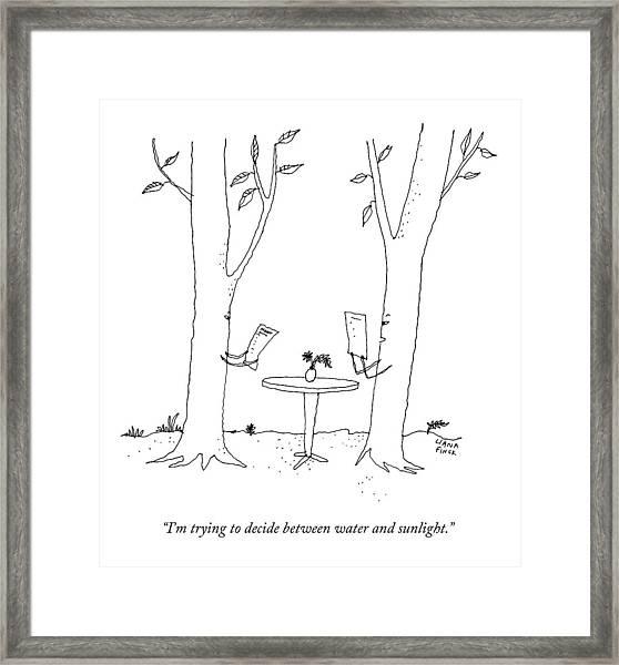 Two Trees Look At Restaurant Menus Framed Print