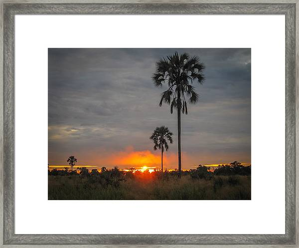 Typical African Sunset Framed Print