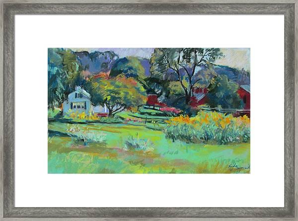 Under Mountain Farm In Summer Framed Print
