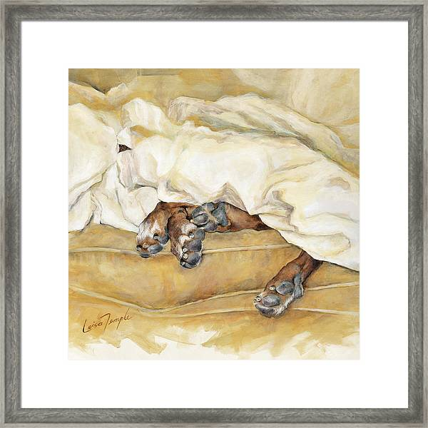 Under The Covers Framed Print