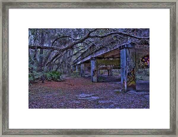 Under The Suwannee River Bridge Framed Print
