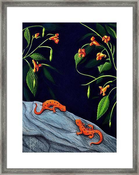 Understory Framed Print
