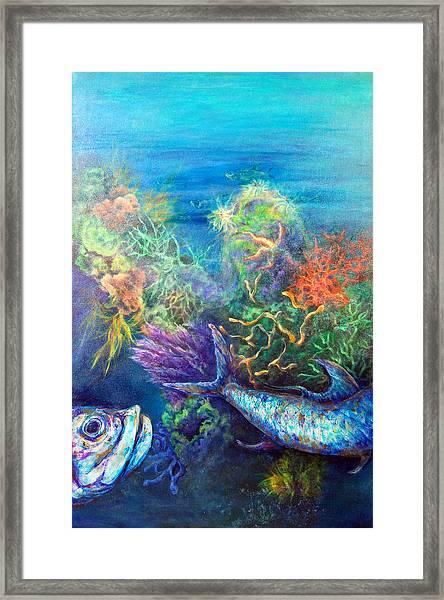Jesus Reef  Framed Print