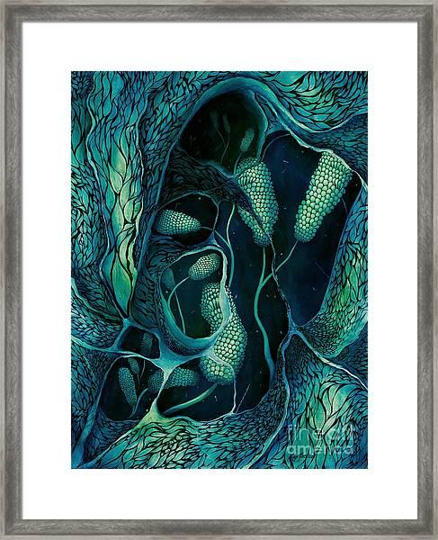 Underwater Revelation Framed Print
