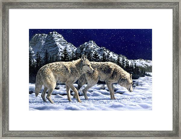 Wolves - Unfamiliar Territory Framed Print