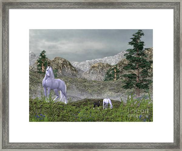 Unicorns In The Mountains Framed Print
