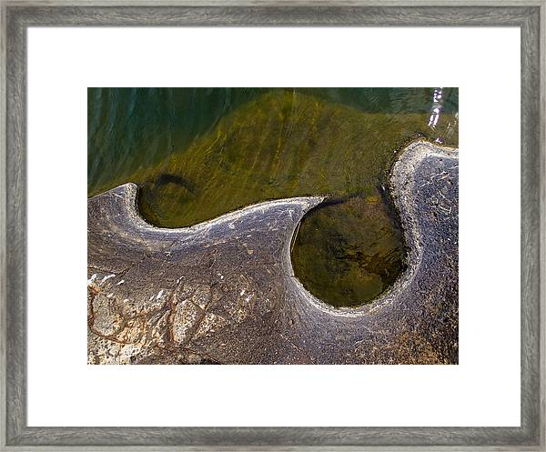 Unscale Framed Print