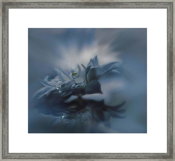 Unspoken Words... Framed Print