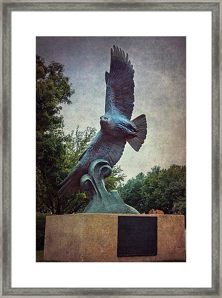 Unt Eagle In High Places Framed Print