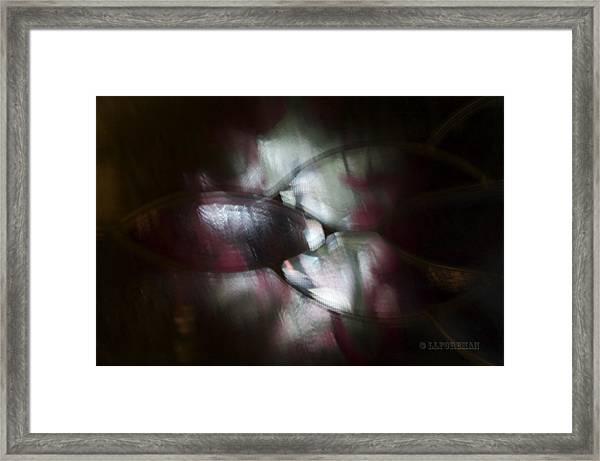 Untitled #1 Framed Print