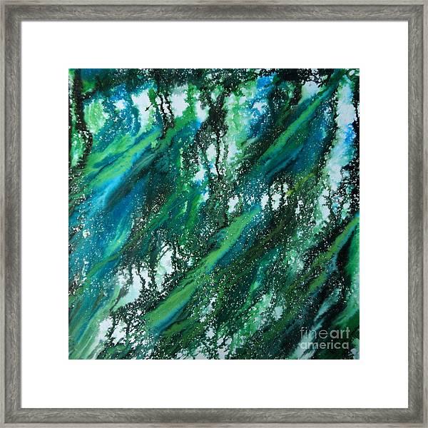 Duars Jungle Framed Print