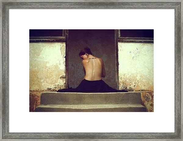 Untitled Framed Print by Assaf Lazar