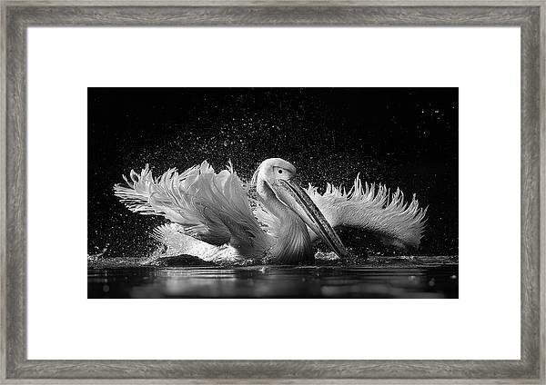 Untitled Framed Print by C.s. Tjandra