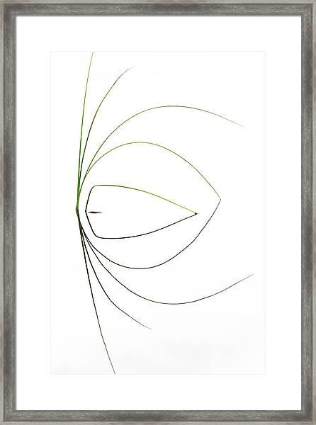 Untitled Framed Print by Dirk Heckmann