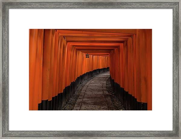 Untitled Framed Print by Pawel Majewski