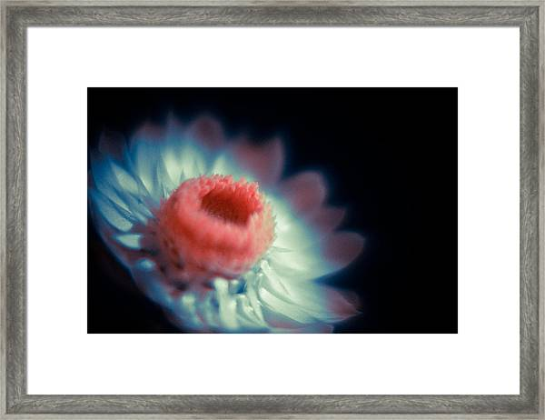 Unto You I Thee  Framed Print