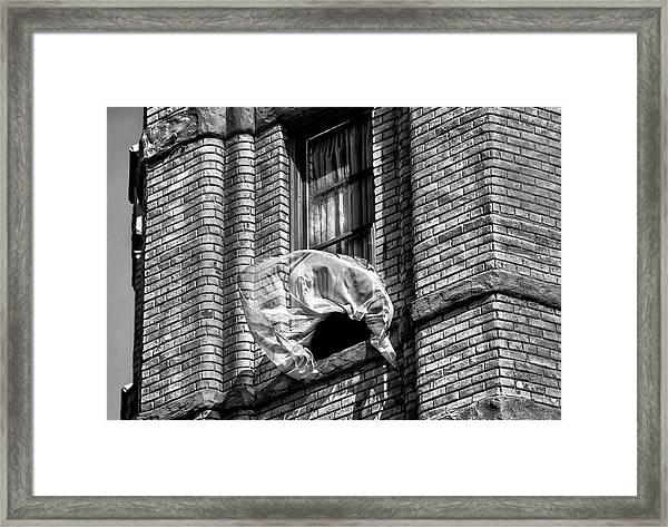 Untold News By Denise Dube Framed Print
