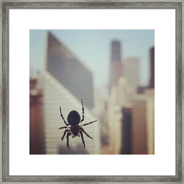 Up Here With The Spiders Framed Print