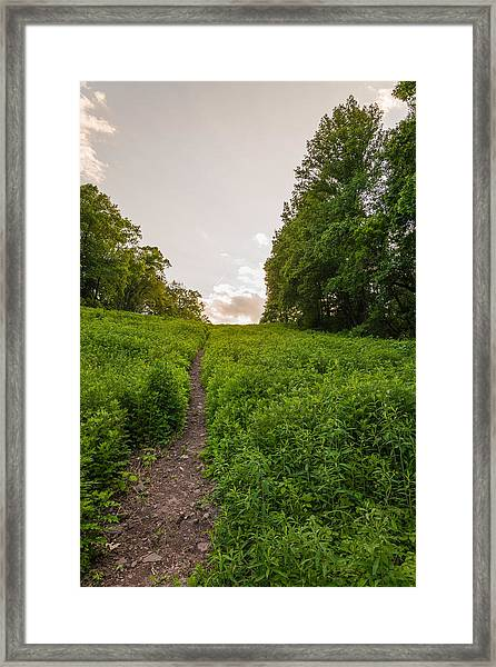 Up Hill Framed Print