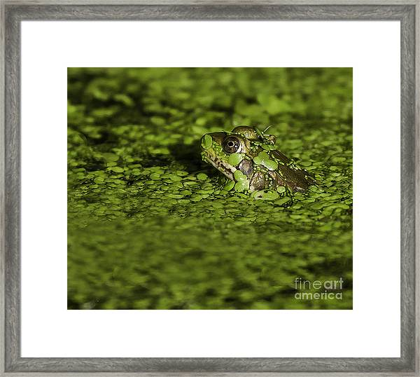 Up To My Neck Framed Print