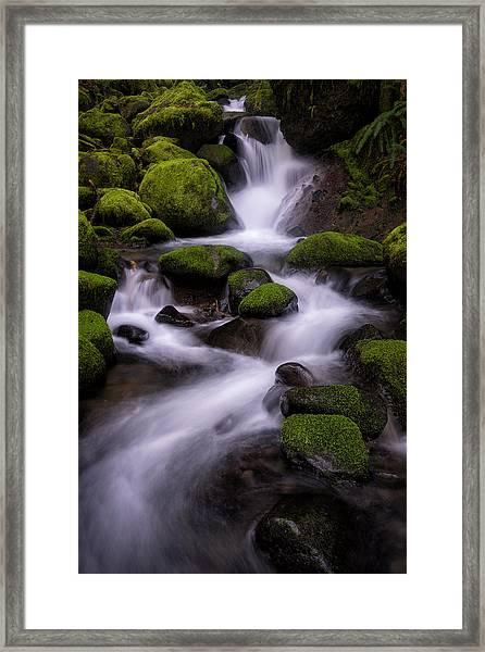 Upper Ruckel Creek Framed Print