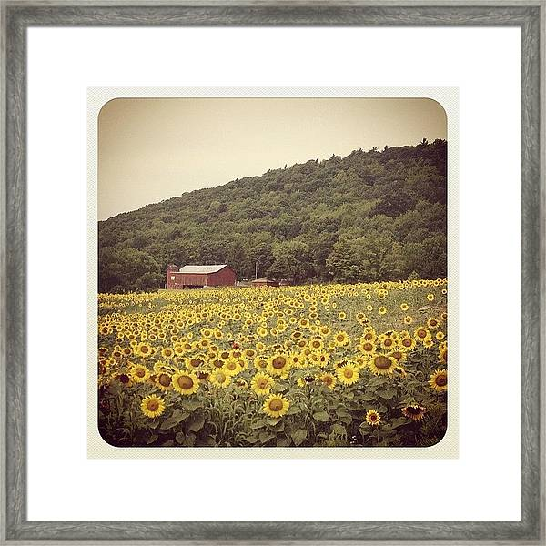Upstate Framed Print by Mike Maher