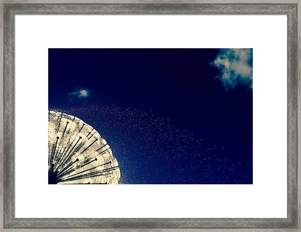 Urban Dandelion Framed Print