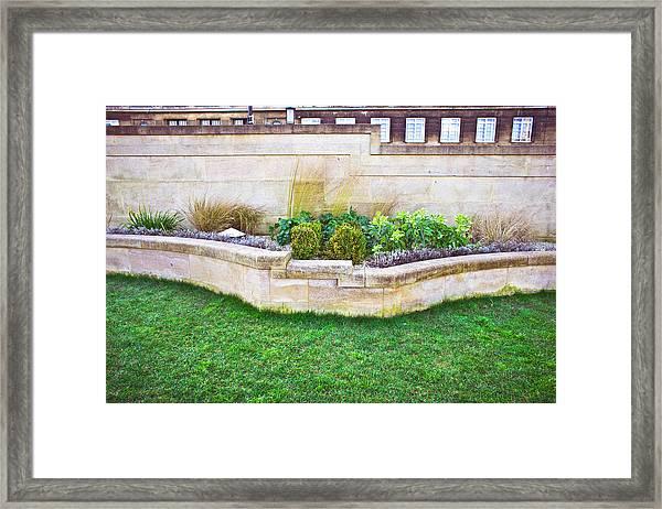 Urban Garden Framed Print