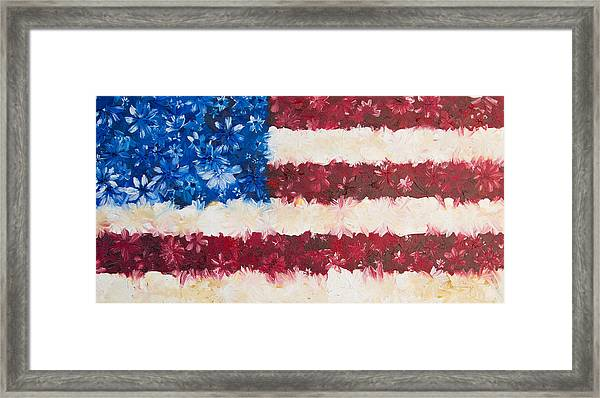 Usa Proud Framed Print