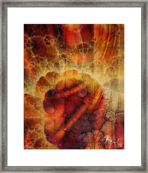 V-03 Framed Print