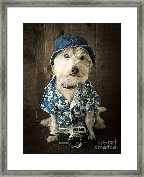 Framed Print featuring the photograph Vacation Dog by Edward Fielding