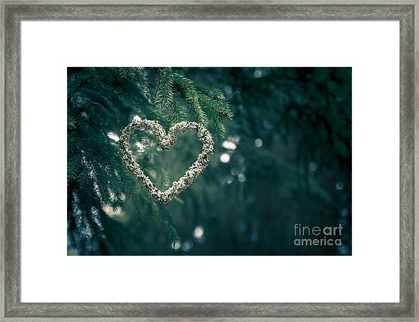 Valentine's Day In Nature Framed Print