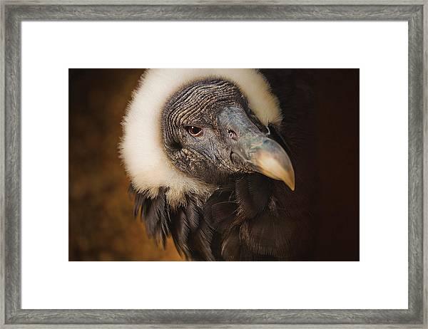 Vallerie Framed Print