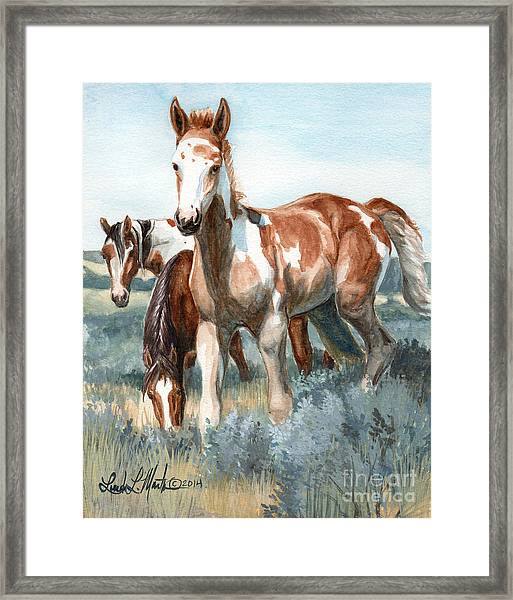 Van Gogh Of Sand Wash Basin Colorado Framed Print