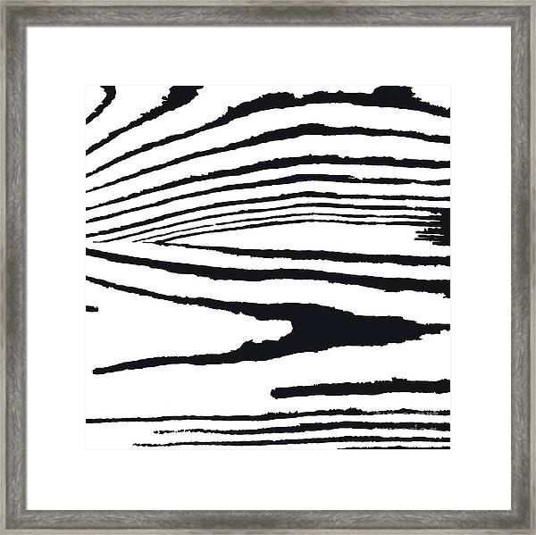 Vector  Grunge  Texture  In Black And Framed Print by Olga Borysenko