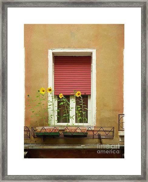 Venice Italy Yellow Flowers Red Shutter Framed Print