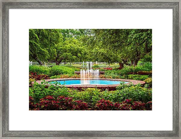 Verdant Garden Framed Print