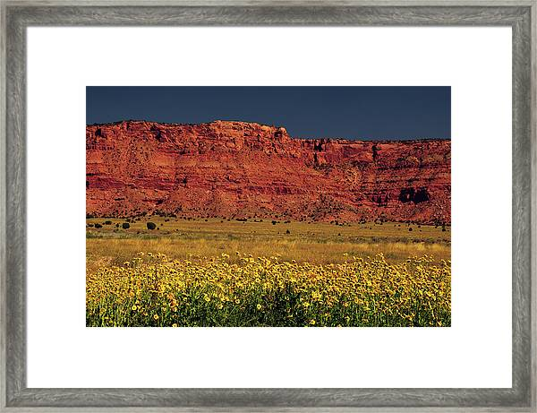 Vermillion Cliffs And Field Of Yellow Framed Print