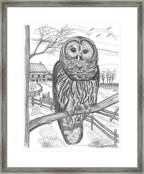 Vermont Barred Owl Framed Print